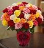 June: Roses